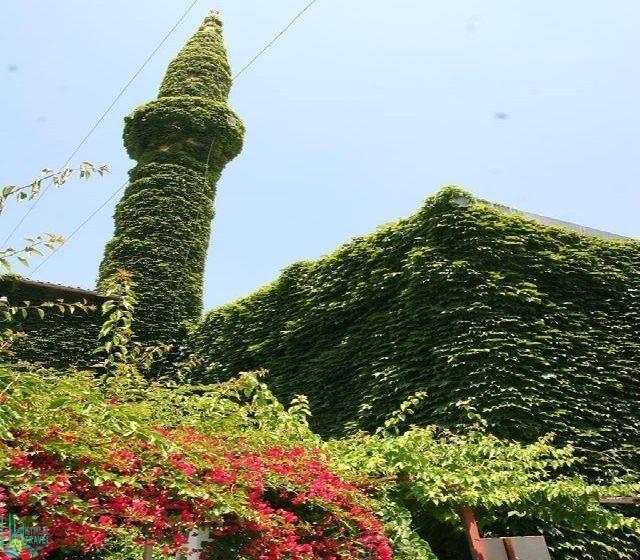 الجامع الأخضر